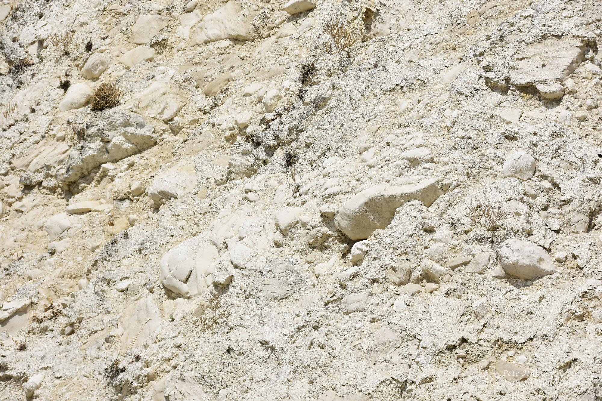 Ventnor Chalk Cliffs
